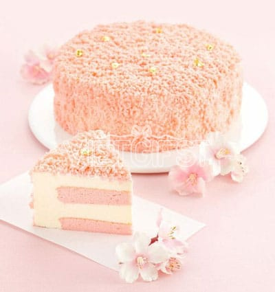 hai cheese breadtalk cakes