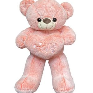pink-teddy-bear-heart-02