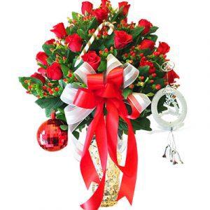 special flower christmas