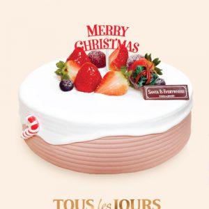 xmas-tous-les-jours-cake-02