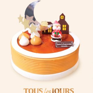 xmas-tous-les-jours-cake-05