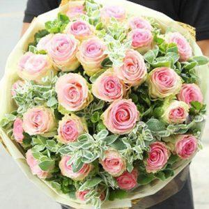 Ecuadorian Roses 22