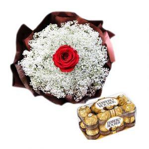 ecuadorian roses 01