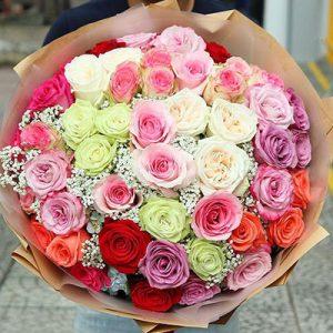 ecuadorian roses 20