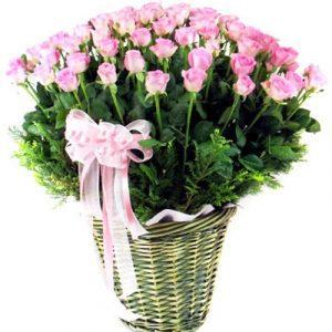 tet flowers 03