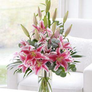 tet flowers 05