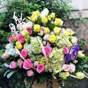 tet flowers 09