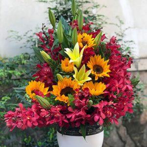 tet flowers 11