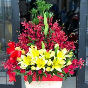 tet flowers 13