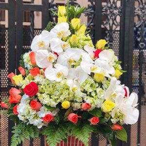 tet flowers 17