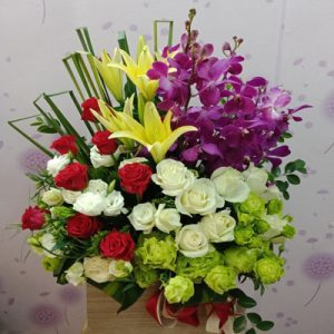 tet flowers 20