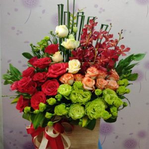 tet flowers 21