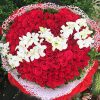 Special Heart Love