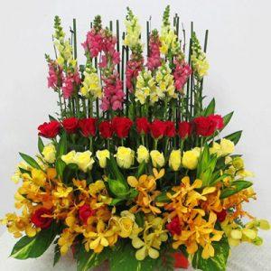 vietnamese-teachers-day-flowers-09