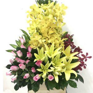 vietnamese-teachers-day-flowers-12
