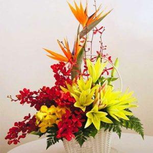 vietnamese-teachers-day-flowers-17