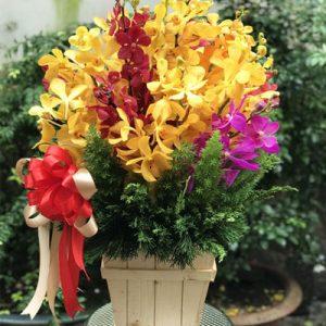vietnamese-teachers-day-flowers-43