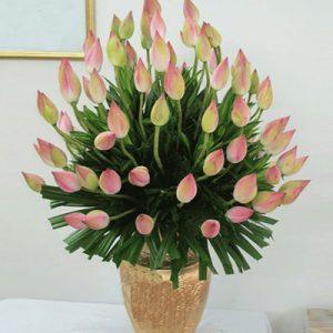 vietnamese-teachers-day-flowers-47