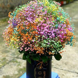 vietnamese-womens-day-flowers-23