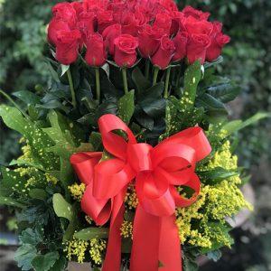 christmas-roses-30