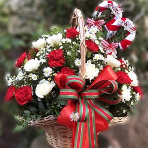 Special Christmas Flowers 06