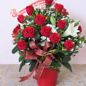 Special Christmas Flowers 10