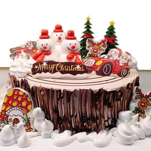 xmas-cake-10