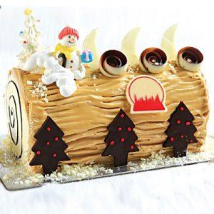 xmas-cake-14