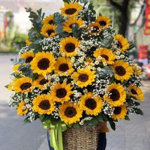 Tet Flowers 24