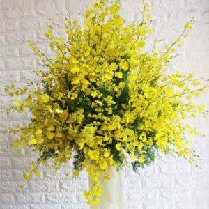 Tet Flowers 25