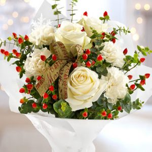 christmas-roses-31