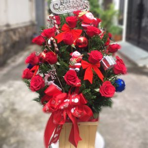 special-christmas-flowers-01
